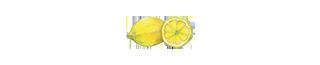 エネルギー代謝や水分吸収 レモン