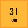 31cm(安全靴)