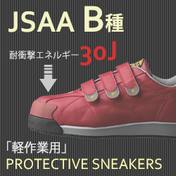 JSAA B種